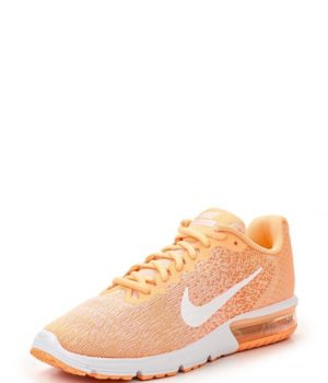 Кроссовки Nike WMNS NIKE AIR MAX SEQUENT 2